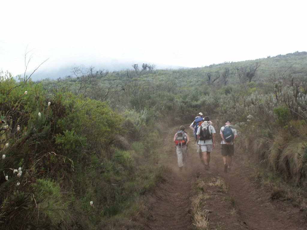 Following the dusty track up to the Shira Plateau.