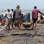 01 Viajefilos en Sri Lanka. Negombo 14