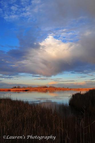 seascape clouds sunrise bay md nikon maryland easternshore tilghman chesapeakebay tilghmanisland talbotcounty knappsnarrows d700 laurensphotography lauren3838photography