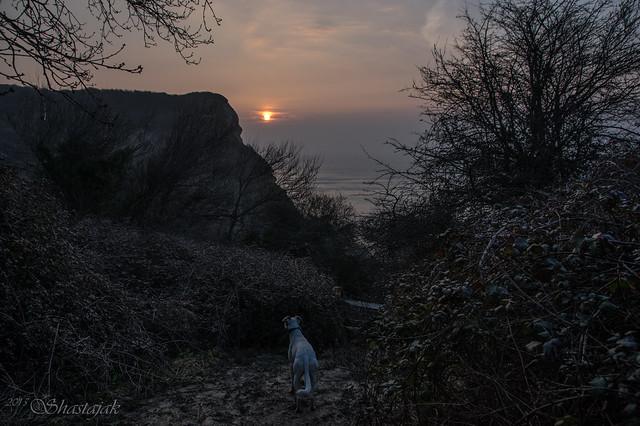 Sunrise From a Landslip