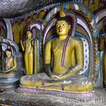 08 Viajefilos en Sri Lanka. Dambulla 28