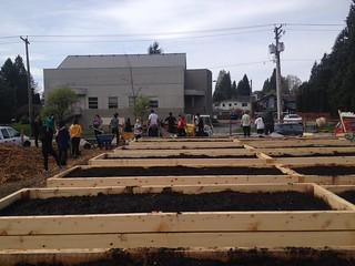 Sutherland Schoolyard Market Garden | by The Edible Garden Project