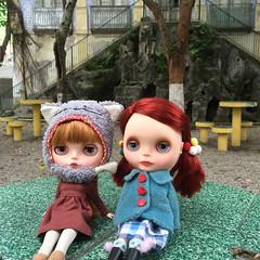 Pompom e Fox  #blythe #pompom #fox #doll #boneca #takara #emcasa