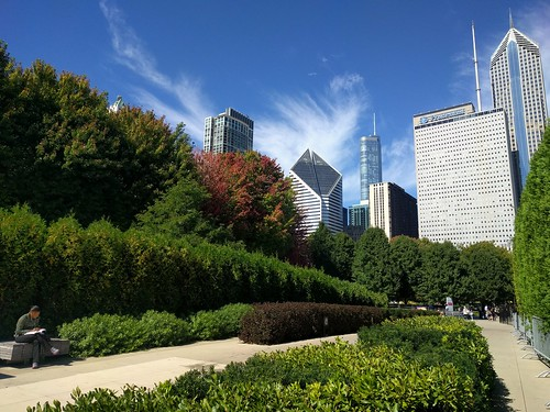 chicago millenniumpark skyline park landscape landscaping skyscape sky clouds fall autumn foliage architecture