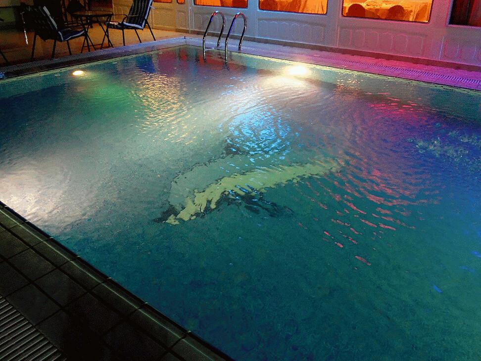 Dolphin show al seteen palace hotel riyadh beat the - Hotels in riyadh with swimming pools ...