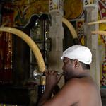09 Viajefilos en Sri Lanka. Kandy 11