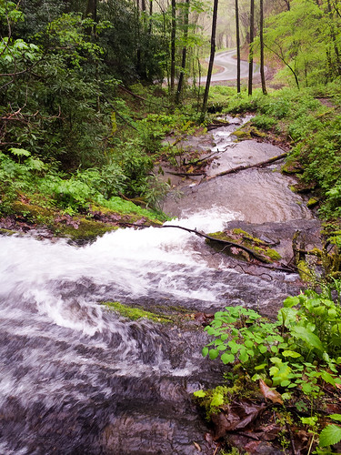 road trees mountain green water waterfall northcarolina winding cascade cullowhee