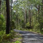 Viajefilos en Australia. GOR  084