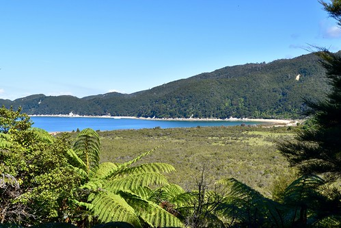 Looking out over Onetahuti Bay   by ndimmock