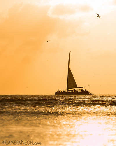 sunset sea bird praia beach yellow strand boat mar barco sunny pássaro playa aruba amarelo pôrdosol ave ocaso 海滩 spiaggia noord ビーチ пляж شاطئ ensolarado luzesombra കടവ്