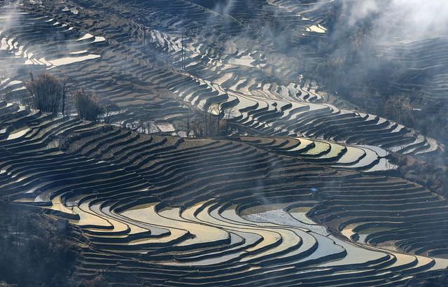*Baida terraced rice fields*