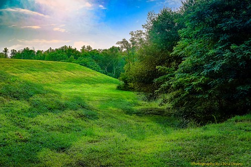 landscapes green outdoors nature