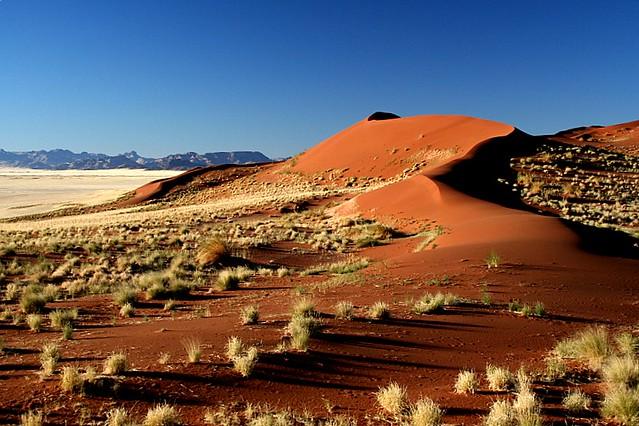 Good morning desert!