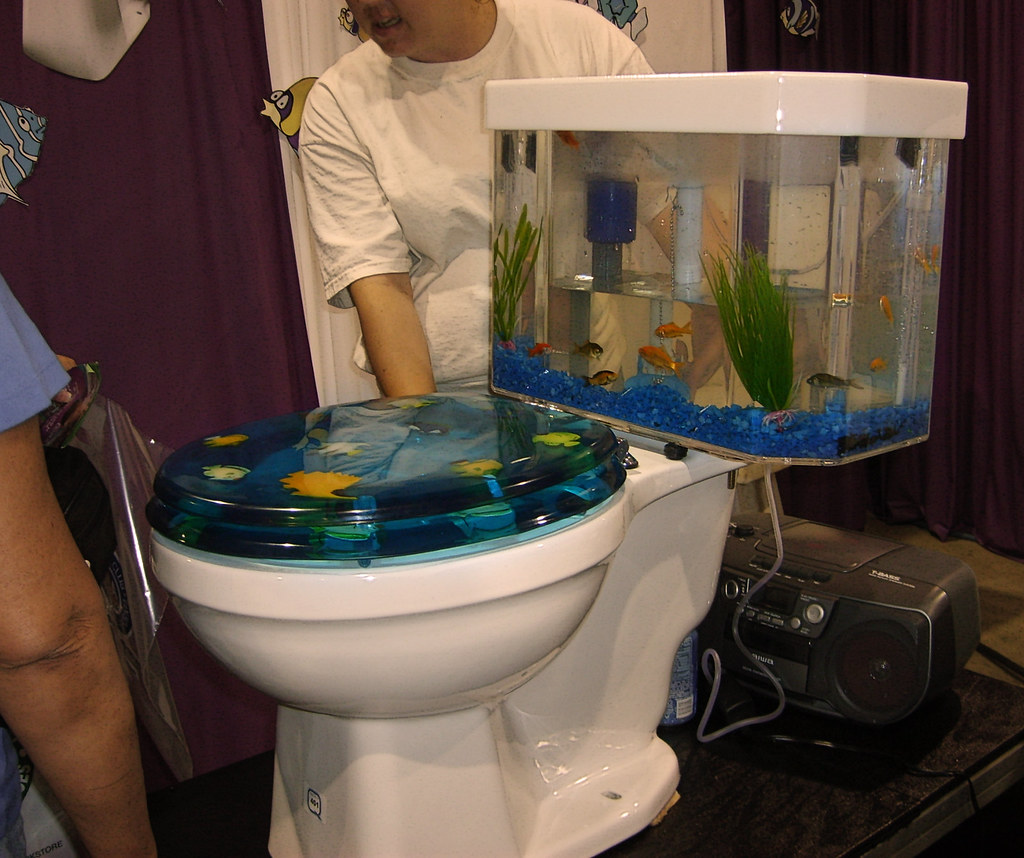 Wondrous Finding Nemo The Tank Has Two Compartments So The Water Th Alphanode Cool Chair Designs And Ideas Alphanodeonline