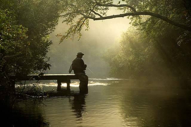 early morning river