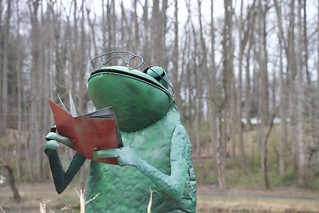 Froggy Reader | by assortedstuff