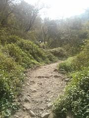 Rishikesh - Kunjapuri Paragliding