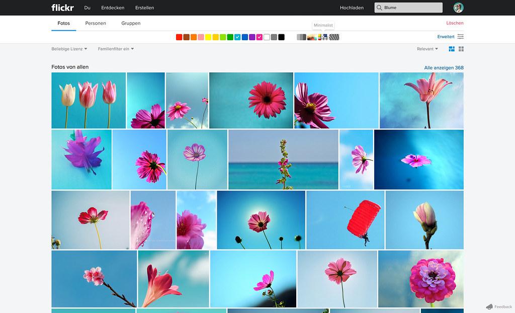 search_2_color_minimal