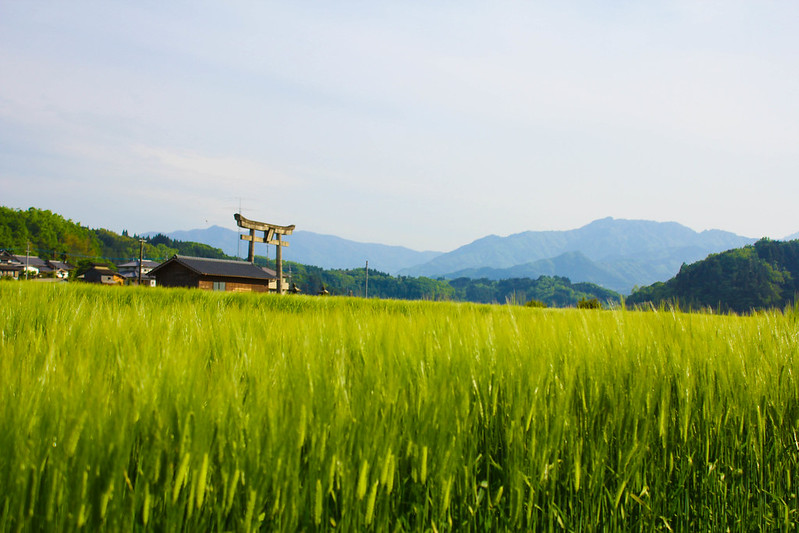 2014-05-06_02747_九州登山旅行.jpg