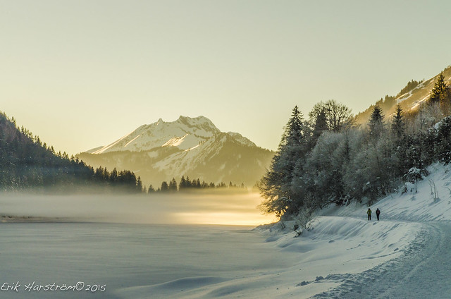 erikharstrom-Winter©2015-0155