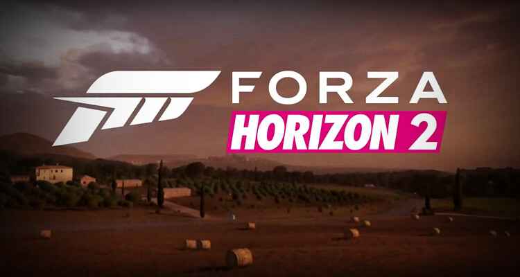 forza horizon 2 pc install key.txt download