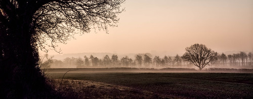panorama tree nature silhouette rural landscape countryside spring flickr olympus hampshire 75300mm omd basingstoke lightroom 2015 m43 mft em5 lr5 microfourthirds mzuiko ibworth