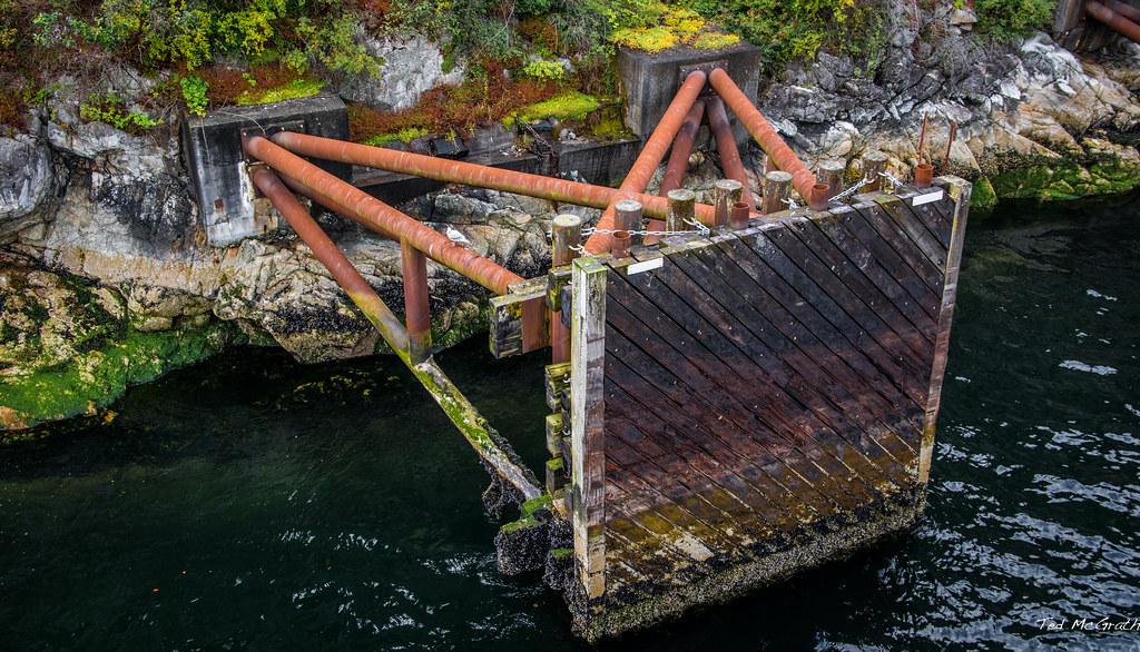 Sewell's Marina, Horseshoe Bay, BC, Canada. Eco-Tours ...  |Horseshoe Bay Boat