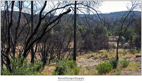 california calaverascounty californiacavern wildfire buttefire devastation