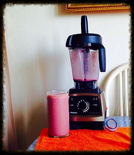 Testing the Vitamix 750 Professional. | by Esoteric_Desi