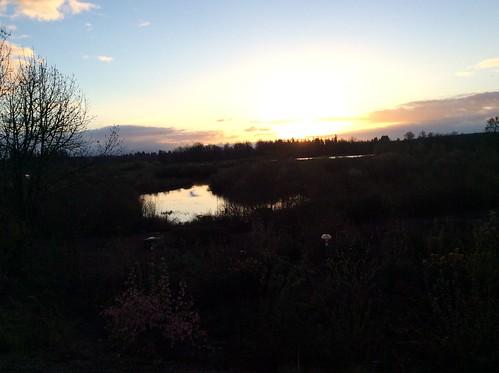 oregon sunrise bottom jackson wetlands preserve hillsboro