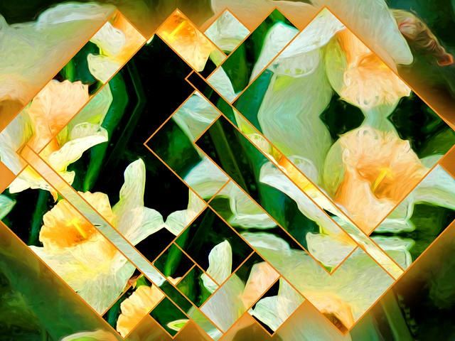 Quilted Narcissus