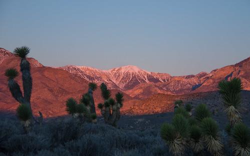 lasvegas nevada unitedstates sunrise mountain