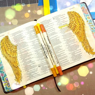 Psalms 91:4 Under his wings you will find refuge Bible Journaling