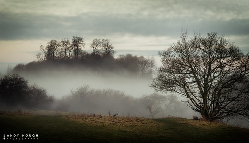 morning trees england mist landscape unitedkingdom sony wallingford roundhill wittenhamclumps southoxfordshire a99 sonyalpha andyhough earthtrust slta99v andyhoughphotography