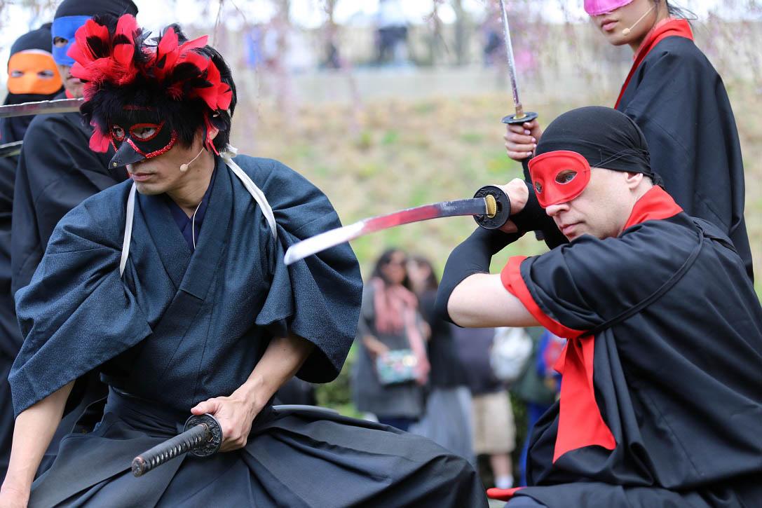 BBG Sakura Matsuri Brooklyn Botanical Garden CHERRY BLOSSOM Festival - Samurai Sword Soul