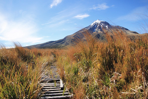 newzealand nature landscape hiking swamp tramping mttaranaki egmontnationalpark ahukawakawa canoneos550defs1585