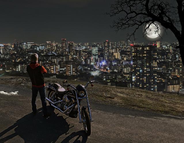 moonlit night rider