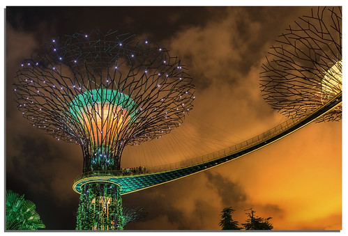 sunset garden singapore ngc gardensbythebay nikkor1635mmf4 nikonfxshowcase