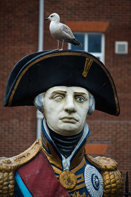 Admiral Nelson and Lieutenant Pigeon