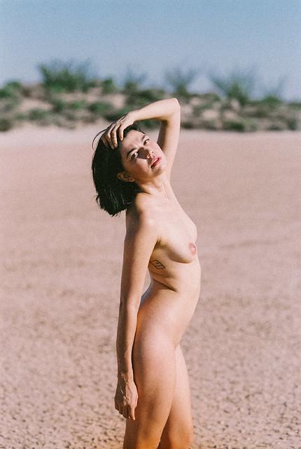 Sonoran Desert on FILM
