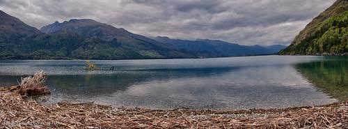 nz newzealand lake pano panorama stitch reflection water wanaka