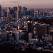 Tilt-shift panorama of Tokyo from Mori Tower by Alfie | Japanorama