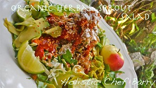 Organic Herbal Sprout Salad | by Barry Gourmet and Raw