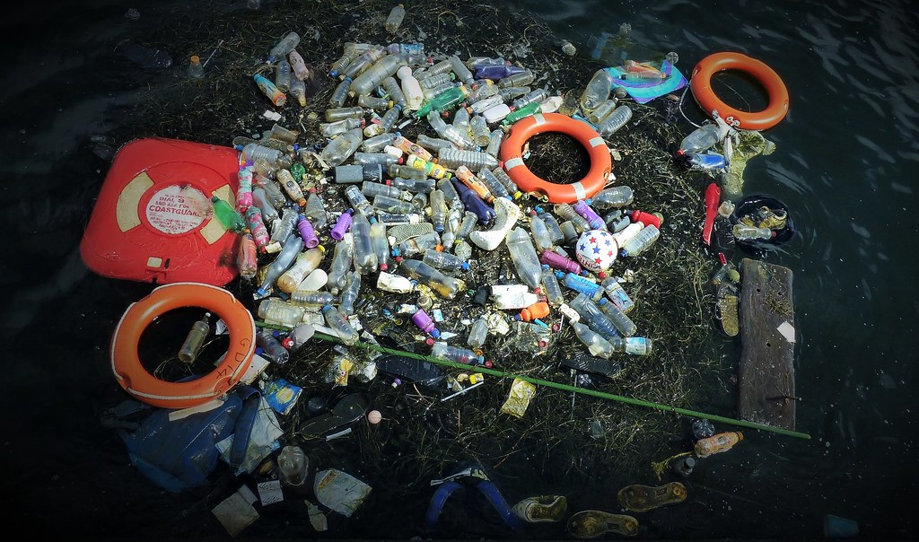 Cardiff Bay supplier to Plastic Oceans