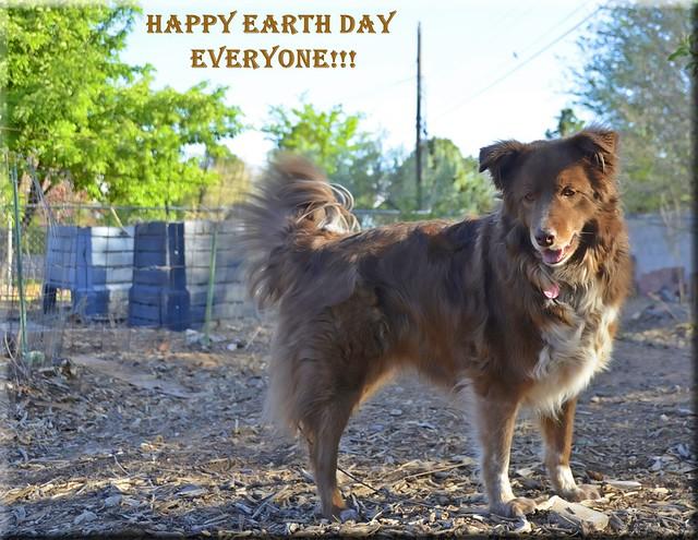 DDC-Happy Earth Day!!!