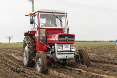 20140405 Vintage Tractor Run 321