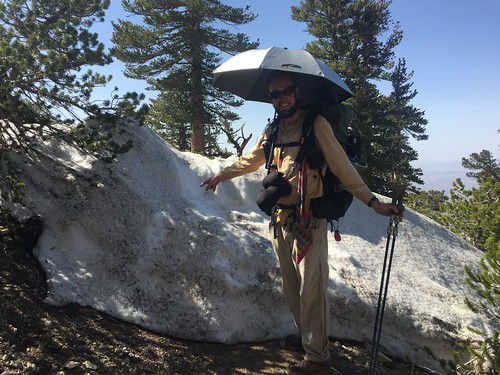 PCT: Day 29