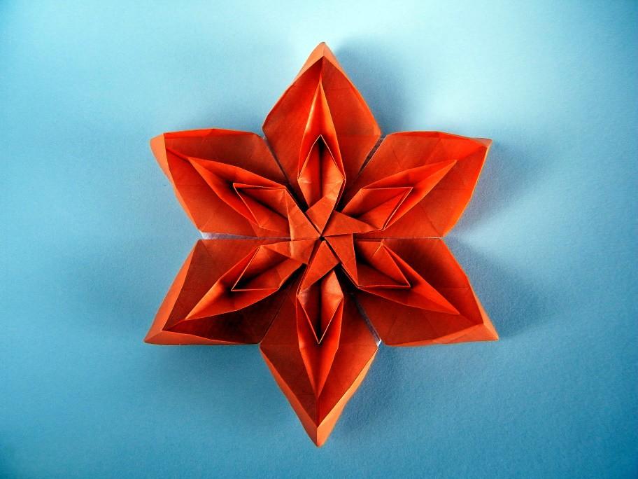 Tessellated Flower - David Martínez