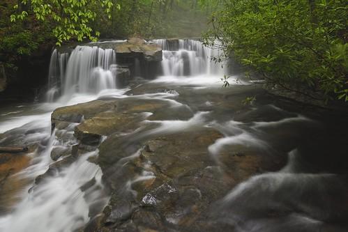 nikon d500 landscape nature falls jonathanrun ohiopylefallsstatepark pa water leaves rock
