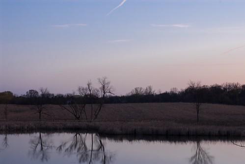 nature sunrise landscape 50mm illinois pentax f14 pa photoaday smc istds lakezurich project365 cubamarsh pentaxart